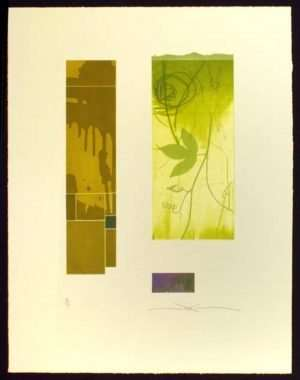 Shinko Araki - Green Flora I (2002)