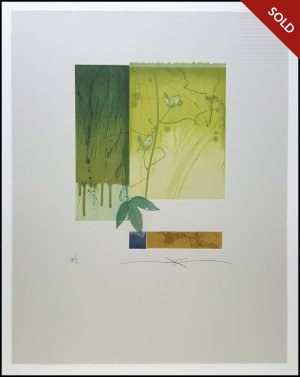 Shinko Araki - Green Flora III (2002)