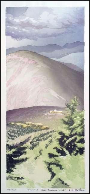 Matt Brown - Greenleaf Above Franconia Notch (2014)