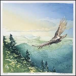 Matt Brown - Over Mt. Osceola (2016)