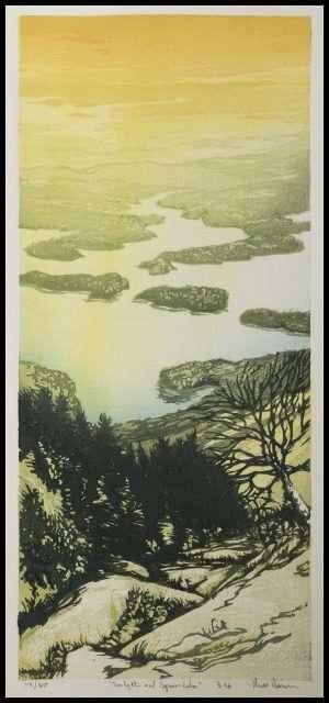 Matt Brown - Sunlight and Squam Lake (2017)
