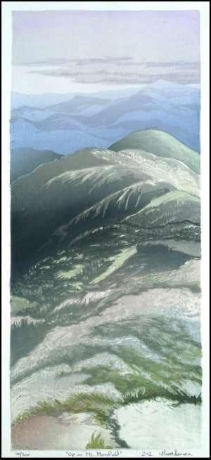 Matt Brown - Up on Mt. Mansfiled (2012)