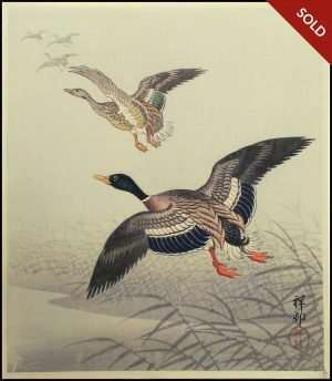Ohara Koson - White Fronted Geese Flying Above Reeds and Water (1920-30)