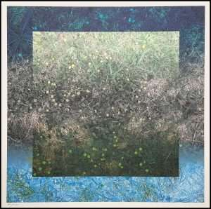 Susumu Endo - Nature and Space/Space Grass No. 4 (1990)
