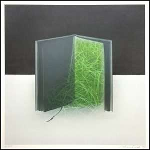 Susumu Endo - Space and Space Book and Grass (1989)
