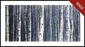 Ted Coyler - In The Forest (1998)