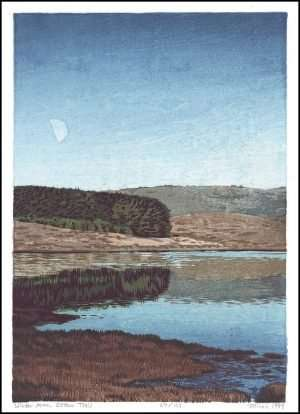 Micah Schwaberow - Winter Moon, Estero Trail (1997)