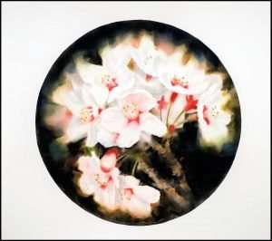 Joel Stewart - Tea Room Window Series: Sakura (2013)