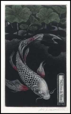Katsunori Hamanishi - Asagi Butterfly Carp, Exlibris (2018)