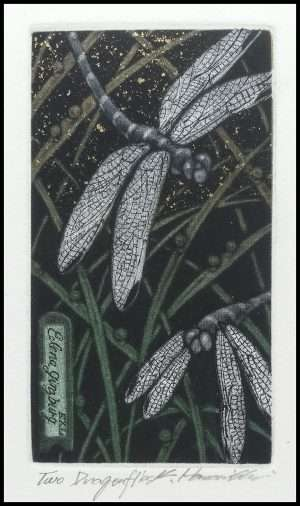 Katsunori Hamanishi - Two Dragonflies, Exlibris